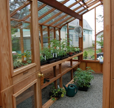 Interior of 12x16 Garden Deluxe with Dutch door option and two-tier benches