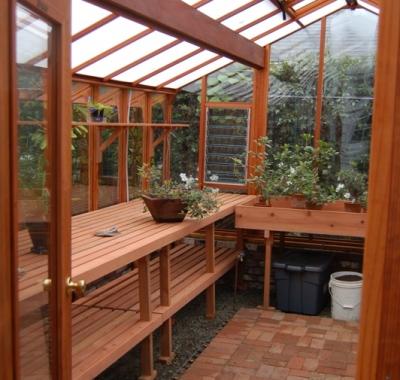 Interior of glass greenhouse
