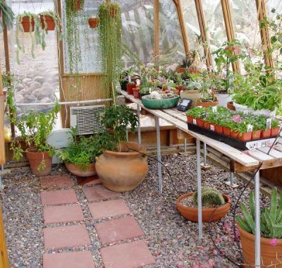 Interior of 11x14 Solite greenhouse in desert with jalousie window in the door