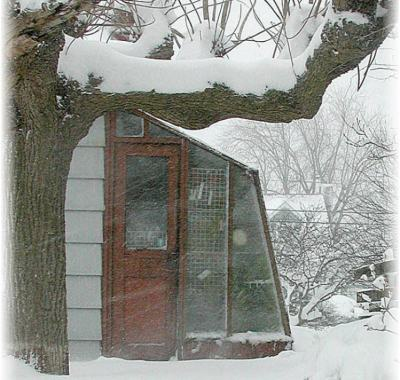5 1/2' wide Solite Lean-to greenhouse in snow
