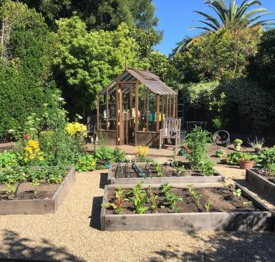 Vegetable gardening with 7x9 Trillium
