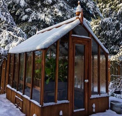 7x9 Trillium in snow