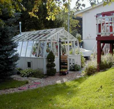 Redwood greenhouse painted white