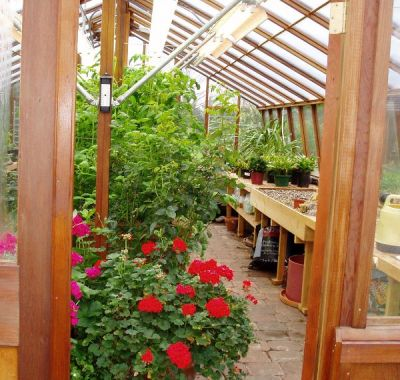 Interior of large home greenhouse