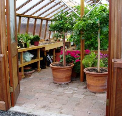 Interior of large home greenhouse-another view