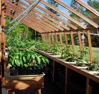 Stone base home greenhouse interior