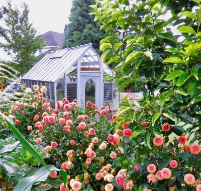 10x18 Tudor in garden