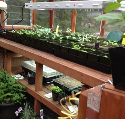 Greenhouse two tier garden bench with lights
