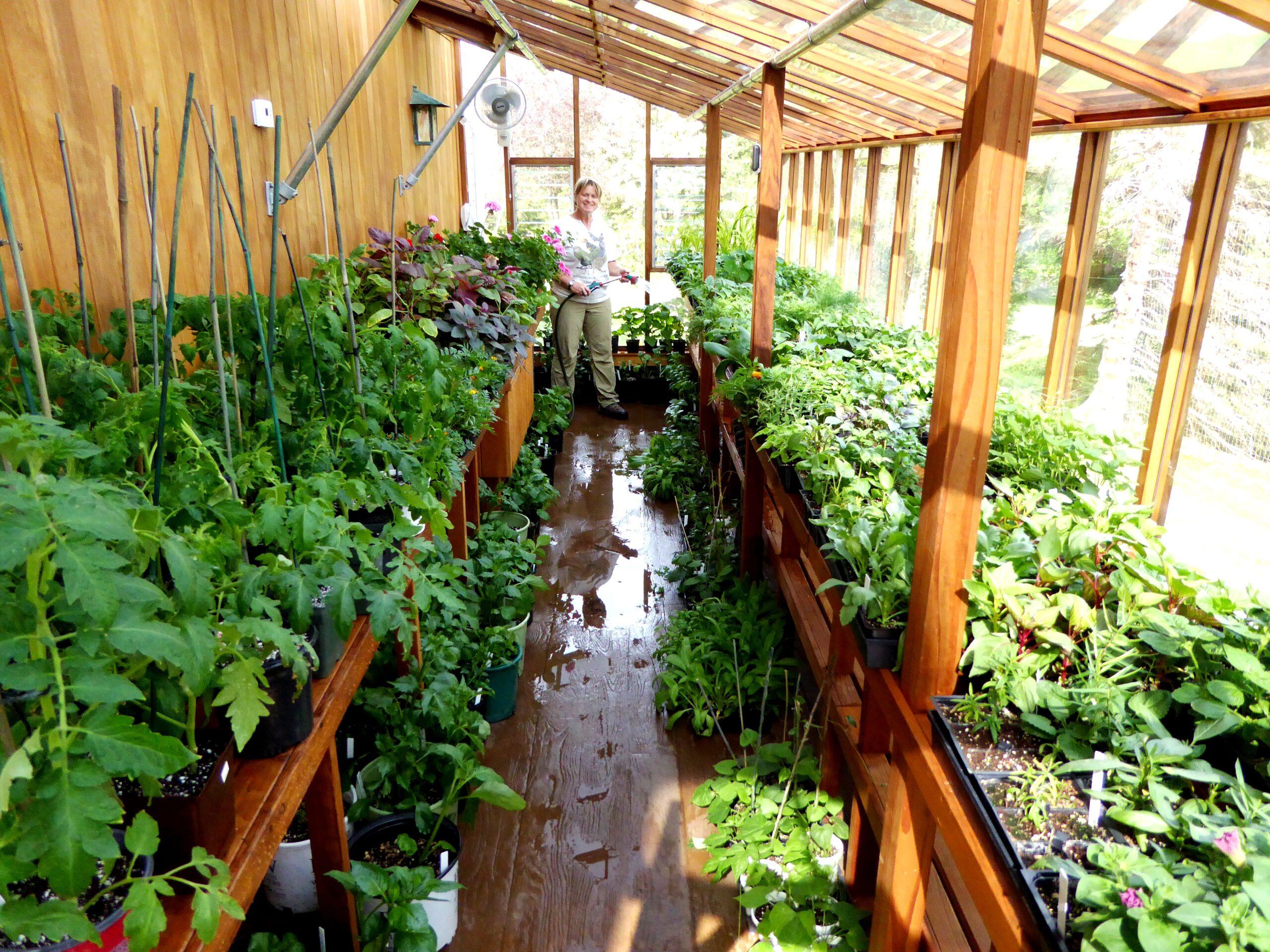 Sturdi-Built Greenhouse Deluxe Lean-to